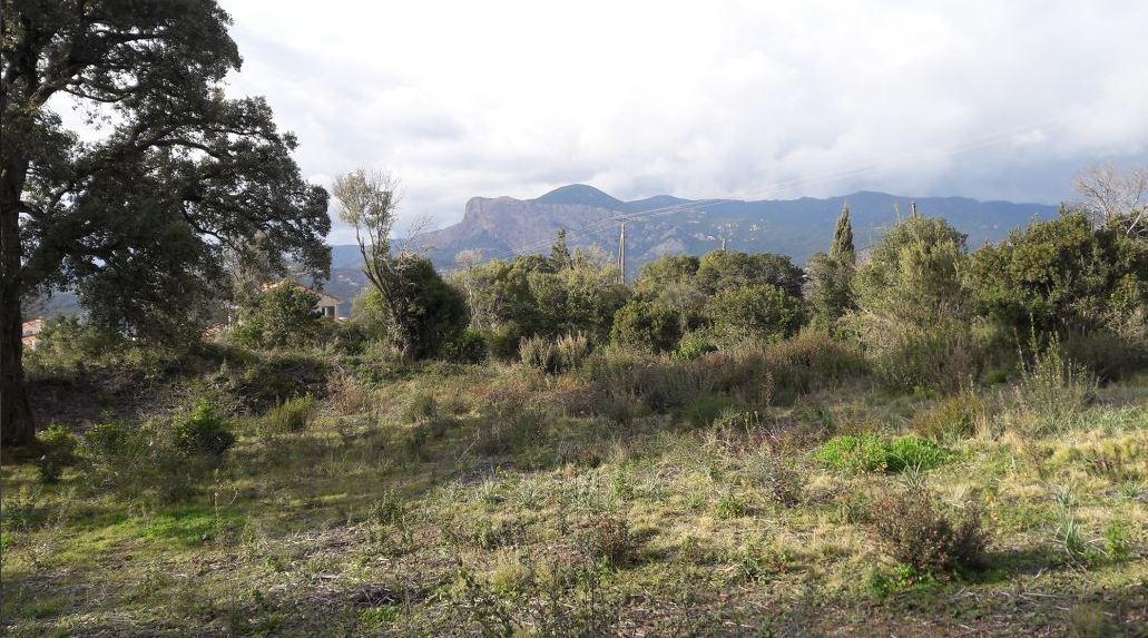 Terrain 1020 m2 Cuttoli-Corticchiato